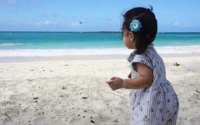 Top 7 Activities for Toddlers Near Waikiki Hawaii
