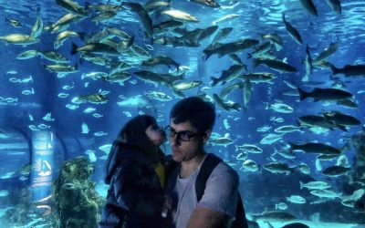 Explore L'Aquarium Barcelonawith Kids